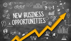 New Business Opportunities